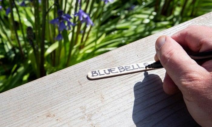 best permanent plant markers